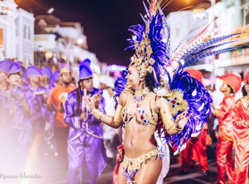 samba-gallery (4)