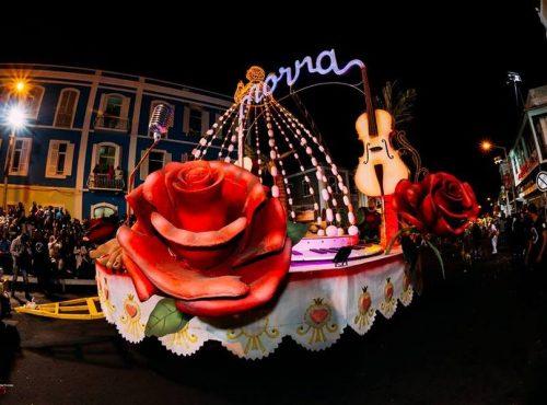 samba-tropical-galeria (5)